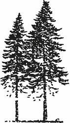 571- Gummistämpel Träd