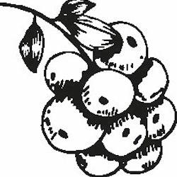 1108-Gummistämpel Bärklase