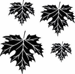 1125-Gummistämpel  4 st detaljerade Lönnblad