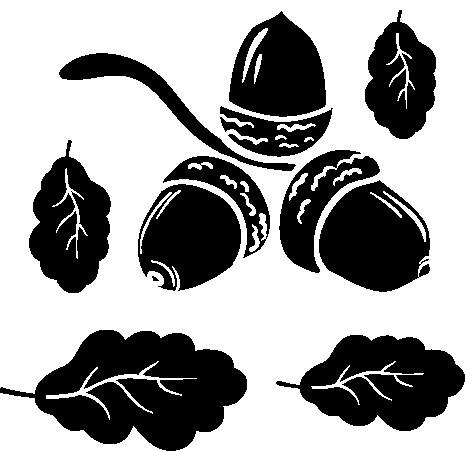 1135-Gummistämpel  Set ekollon