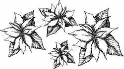 1273-Stämpel set 4 Julstjärnor