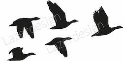 14159-Stämpelset Fåglar Gäss