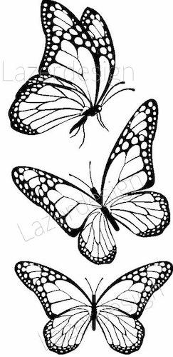 2604-Stämpel  set  fjäril 3 olika