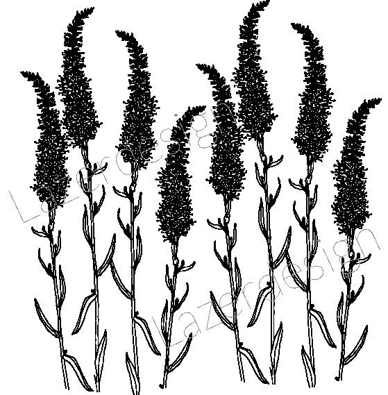 14164-Stämpel Växter