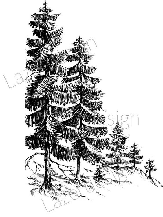 592-Stämpel träd på sluttning