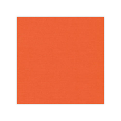 582011 Cardstock Linnestruktur Orange