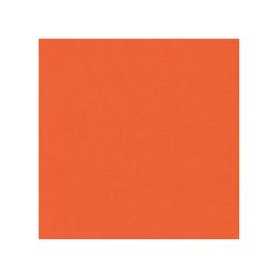 582011 Cardstock Linnestruktur Orange