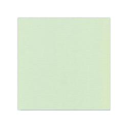 582019 Cardstock Linnestruktur Ljus grön
