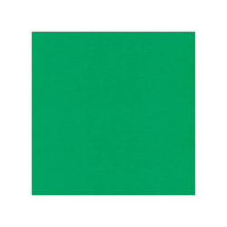 582022 Cardstock Linnestruktur Grön