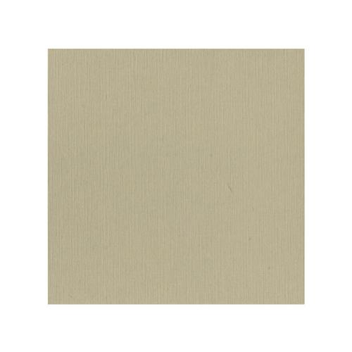 582053 Cardstock Linnestruktur Taupe