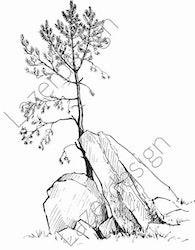 14189-Stämpel träd bakom stenar