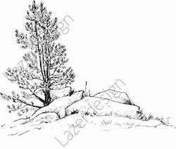 14188-Stämpel träd vid stenröse