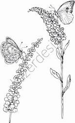 14215-Stämpel Växter o fjärilar