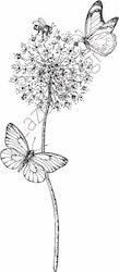 14216-Stämpel Växter o fjärilar