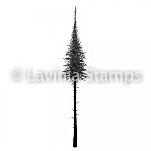 LAV489 small -Clearstamp  Fairy Fir Tree