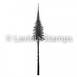 LAV489 small -Clearstamp  Fairy Fir Tree