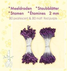 26.4889-Stamen/ Pistiller Mörk Violett