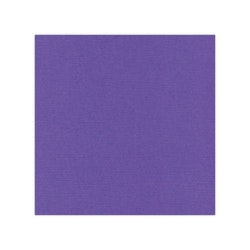 582018 Cardstock Linnestruktur Violet