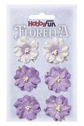 3866053- Florella lavendel 3,5 cm