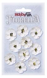 3866011- Florella vit 2,5 cm