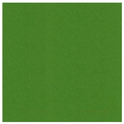 582060 Cardstock Linnestruktur Fern Green