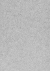 558737 Papper metallic alchemy Silver