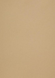 558711 Papper metallic Gold Leaf