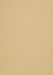 558710 Papper metallic Champange