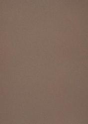 558702 Papper metallic Chestnut