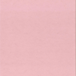 55143METALLIC Rosa A4