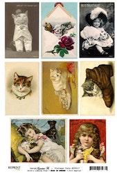 KP0017 Klippark A4 Vintage Cats