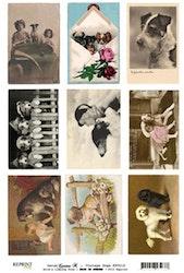 KP0017 Klippark A4 Vintage Dogs