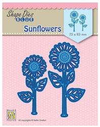 SDB076DIES sunflowers