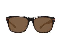 Herrsolglasögon Gant GA70585656E (56 mm)