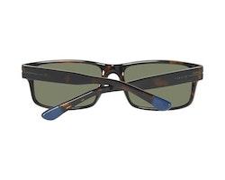 Herrsolglasögon Gant GA70595552N (55 mm)