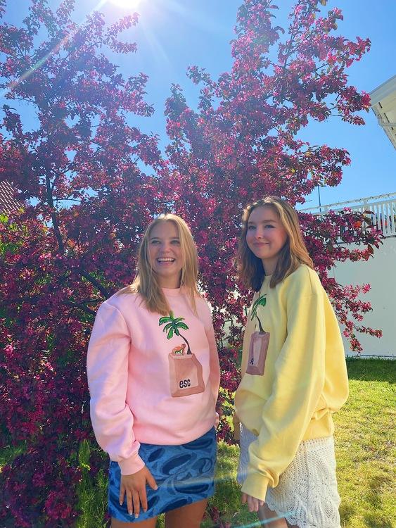 Press Escape Sweater Pink