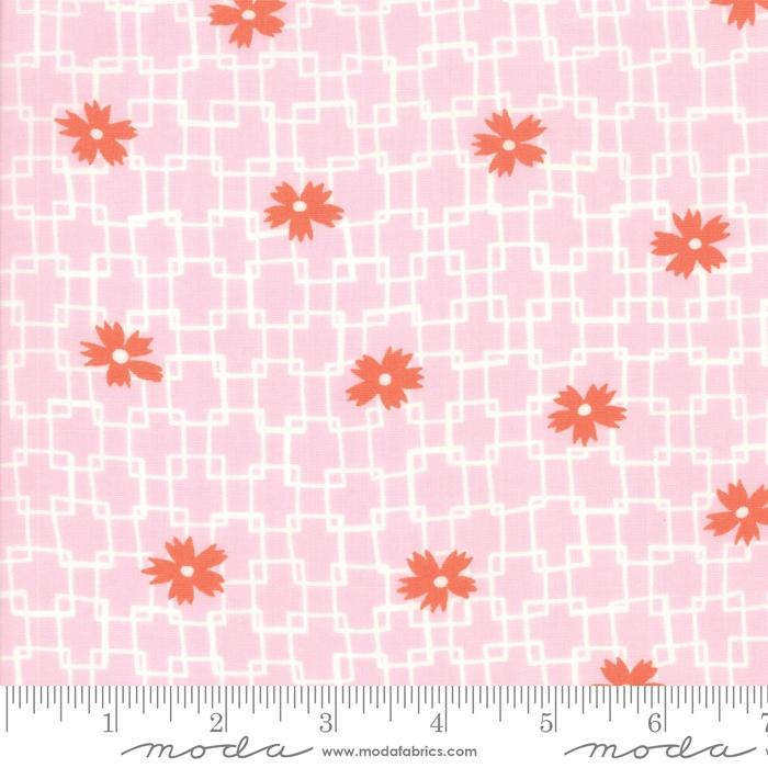 Fine and Sunny- rosa med orange blomster