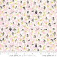 Fine and Sunny- rosa med gråhvite blomster