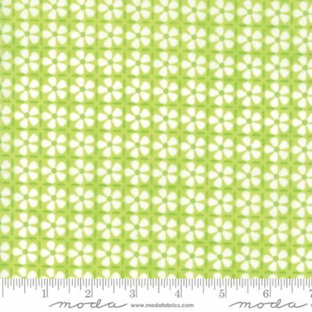 Confetti grønn med hvite blomster