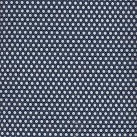 Sweet Marion- blå prikker