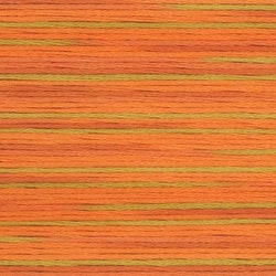 Farge 5008- Cosmo Seasons Variegated Embroidery Floss