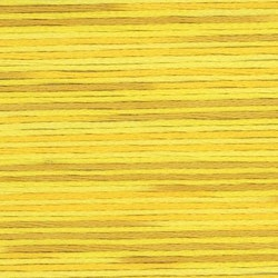 Farge 5009- Cosmo Seasons Variegated Embroidery Floss