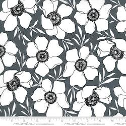 Illustrations Graphite-svart me hvite blomster