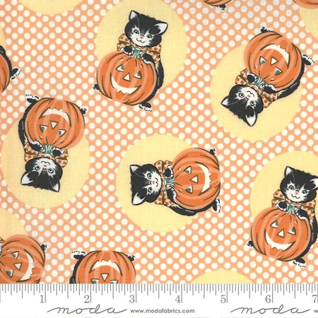 Kitty Corn Pumpkin-katter oransje