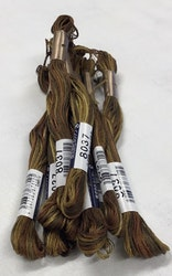 Farge 8037-Cosmo Seasons Variegated Embroidery Floss browns