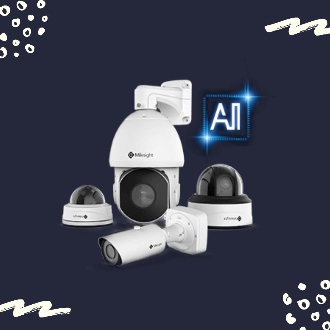 CCTV - Nordic Platinum Network