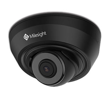 H.265+ IR Mini Dome Network Camera