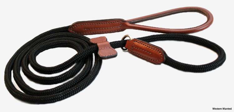 Dog Collar/Leash