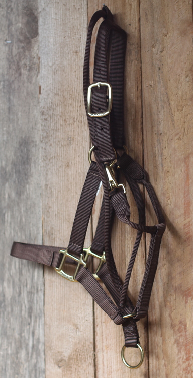 Western Halter - Training Durable- Brown