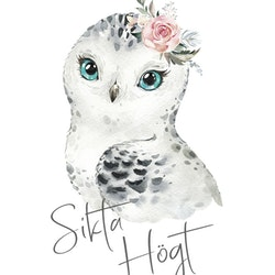 Snöuggla - Sikta Högt ( Konsttryck / Poster )